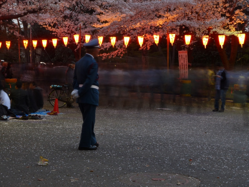 I've never seen things get out of hand at a hanami hot spot, but it's nice to know there is security there just in case.