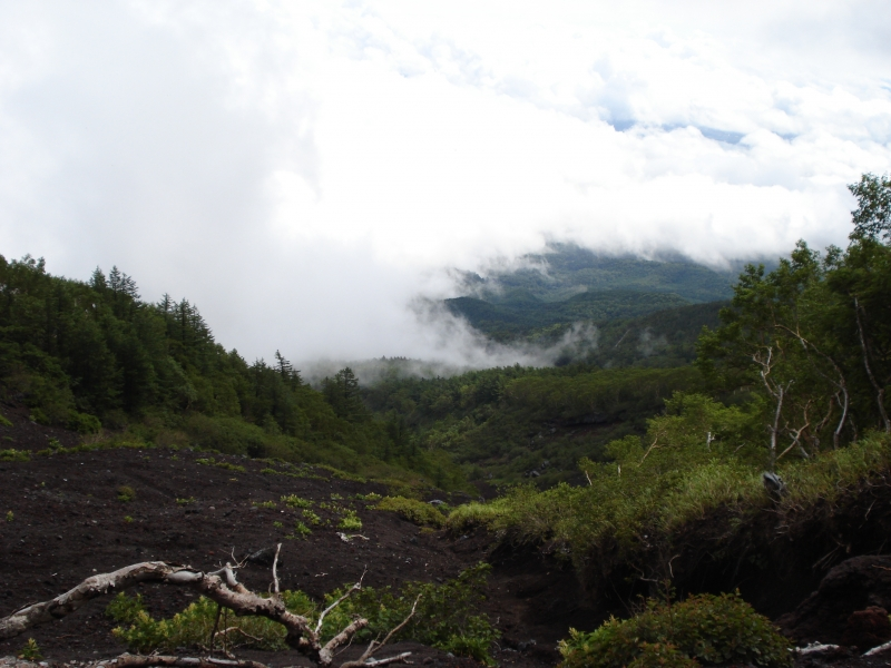 Before the tree line, Mt. Fuji is full of life.  The clouds hugging the surface are amazing.